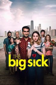 La gran enfermedad del amor (The Big Sick)