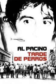 Tarde de perros (Dog Day Afternoon)