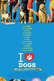 I Love Dogs (Dog Days)