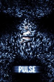 Pulse (Conexión)