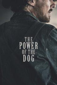 El poder del perro (The Power of the Dog)